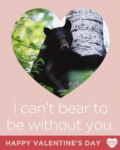 Sierra Club Valentine's Day Facebook post