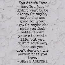 you didnt love her, grey anatomi