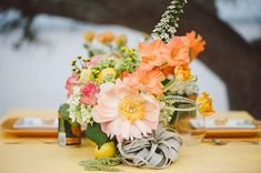 peony and airplant centerpiece