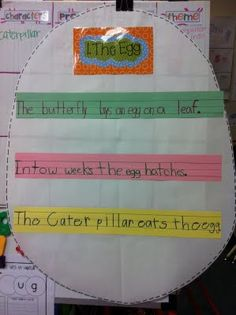 LIfe Cycle of a Butterfly- Interactive writing