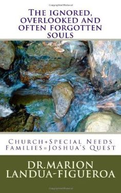 The ignored, overlooked and often forgotten souls: Church+Special Needs Families=Joshua's Quest