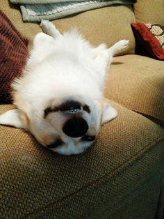 AHHH Very comfy...