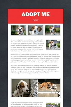 Adopt Me, Farmer Please click on pic for additional info on this dog