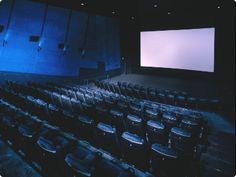 Go to the movies more