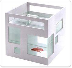 fish hotel!