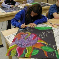 cool sunflower lesson (oil pastel on black background)