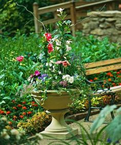 Sunshine container garden. For a list of plants: http://www.midwestliving.com/garden/container/container-gardens-tips/?page=6,0