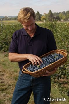 Good tips for growing blueberries, blackberries, and raspberries.