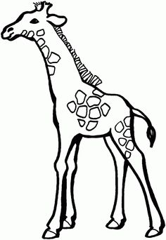 Giraffe - Free Printable Coloring Pages