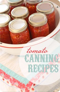 Recipes for canning tomatoes, stewed tomatoes, pizza sauce, spaghetti sauce, salsa