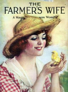 WELCOMETO THE FARMER'S WIFE QUILT WHEREWEREMEMBERTHE PASTTHROUGH VINTAGESTORIES AND TRADITIONAL QUILT BLOCKS
