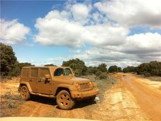 jeeps, wrangler 2011, earth tones, colors, 2011 carrosdel2011, camps, jeep thing, dirt roads, jeep wranglers