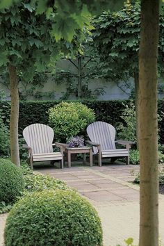 Two rounded chairs add serenity to the scene