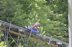 PA's only Mountain Coaster at Camelback Mountain Adventures! #MountainCoaster #IAmAdventure #Camelback #CamelbackAdventures