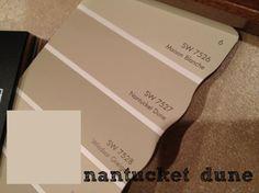 main bath paint (Nantucket Dune by Sherwin Williams)