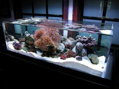 The ZeroEdge Classic 46 is a standard model in the Classic Overflowing ZeroEdge line of products. Like the name implies, the water flows over the edge of the aquarium and gets pumped back up through the aquarium. Available for purchase at www.zeroedgeaquarium.com