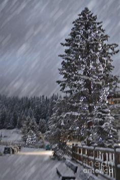 A Lake Louise Christmas, Alberta, Canada