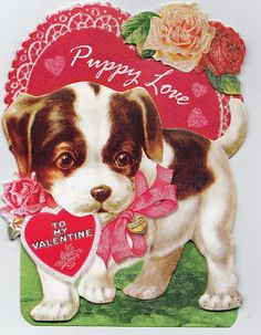 puppy love valentine