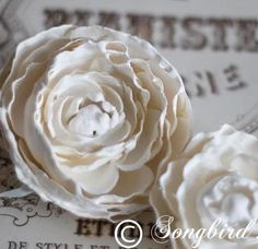 Make plaster flowers the easy way. Dip faux flowers in a plaster mixture and create beauties that last. Find out how at www.songbirdblog.com