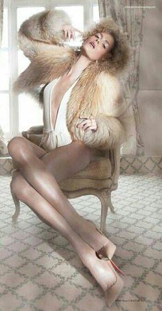 Gorgeous Golden Fox