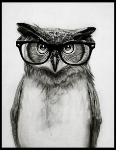 Mr. Owl Art Print by Isaiah K. Stephens | Society6