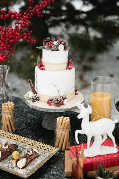 Christmas Woodland Inspiration - Callie Hobbs Photography