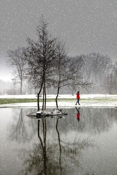 A walk in snow