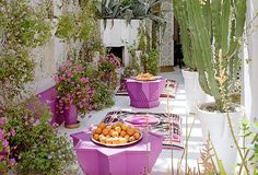 How great is that fuchsia color in this Moroccan inspired oasis?