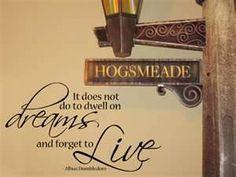 Albus Dumbledore quote <3