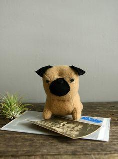 A cute little pug :)