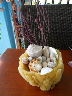Seashells filling natural sponge, with coral.  This could totally go in my living room.
