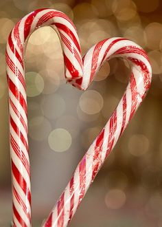 candy cane love