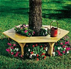 flower benches, tree benches, flowers under trees, bench design, yard flower ideas, garden bench ideas, bench under tree, flower ideas for the yard, big yard ideas