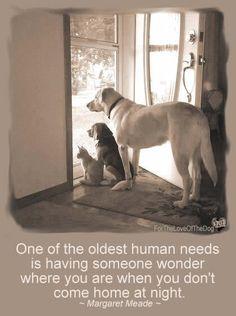 Uma das mais antigas necessidades humanas é ter alguém para saber onde você está quando você não voltar para casa à noite.                                      Margaret Mead