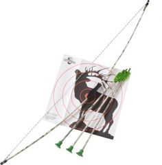 Big Game Jr. Archery Set | Bass Pro Shops
