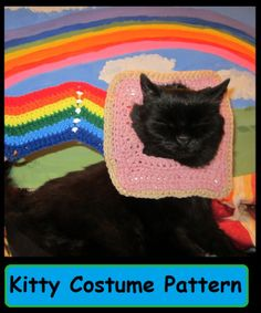 cats, cat hate, costum pattern, cat kitti, cat costumes