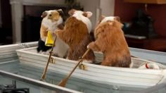 Pig boat