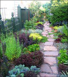 Love this garden pathway by Tangletown Gardens