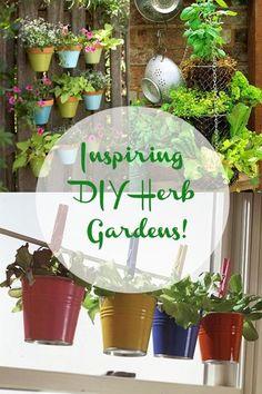 Inspiring DIY Herb Gardens!