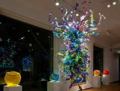 Chihuly exhibit at Arthur Roger Gallery, New Orleans, Louisiana  https://www.facebook.com/media/set/?set=a.10152543572133322.1073741849.62504273321&type=1