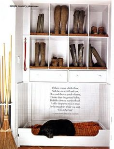 mudroom, love how it is for the dog too