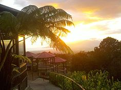 the place where I wanna have breakfast after watching the sunrise from Haleakala volcano on Maui... pancakes with toasted macadamia nuts and coconut syrup... mmmmm....