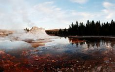 Yellowstone National Park Travel Tips