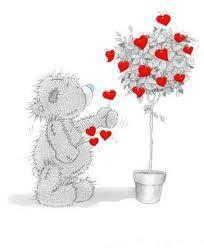 . rose, tree, teddi bear, tatti bear