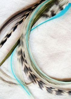 Omg, I'm obsessed with this color combo, I totally want! color combos, feather in hair, feather hair extensions, feather extensions