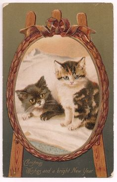 Christmas Kittens, antique holiday postcard