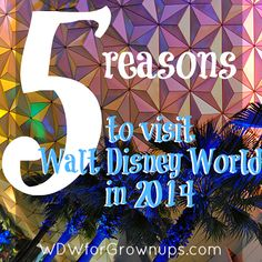 5 Reasons To Visit Walt Disney World This Summer #Disney #vacation
