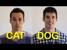 Dog or Catlike Male friends 2