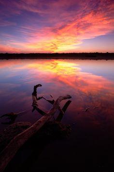 Magical Nature Tour : Photo