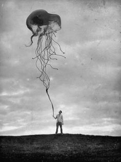 dream, art, kite, thought, sea, octopus, balloon, walk, jellyfish